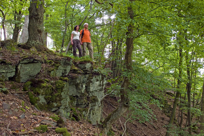 Waldschluchtenpfad: Der Wald bringt Lebenskraft und -freude zurück, er macht uns gesund  © Klaus-Peter Kappest