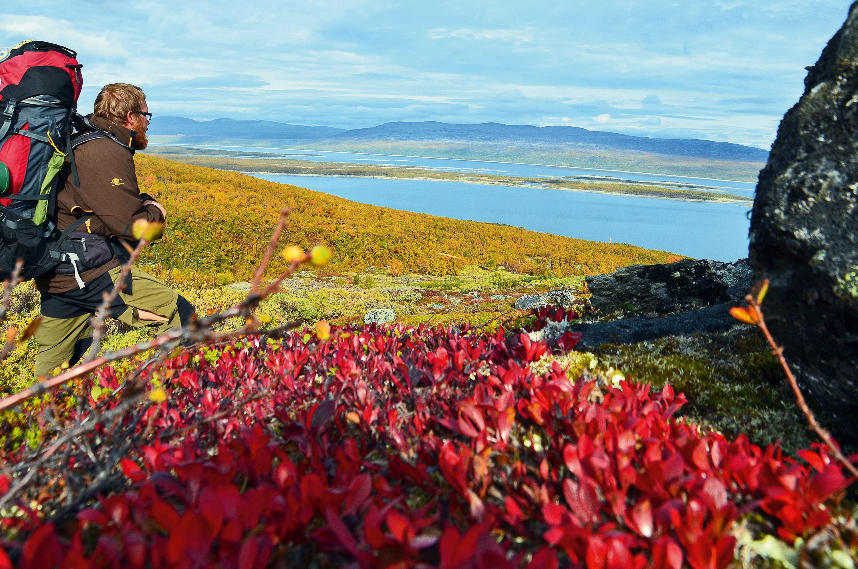Farbenpracht auf dem Fjell © Simon Michalowicz