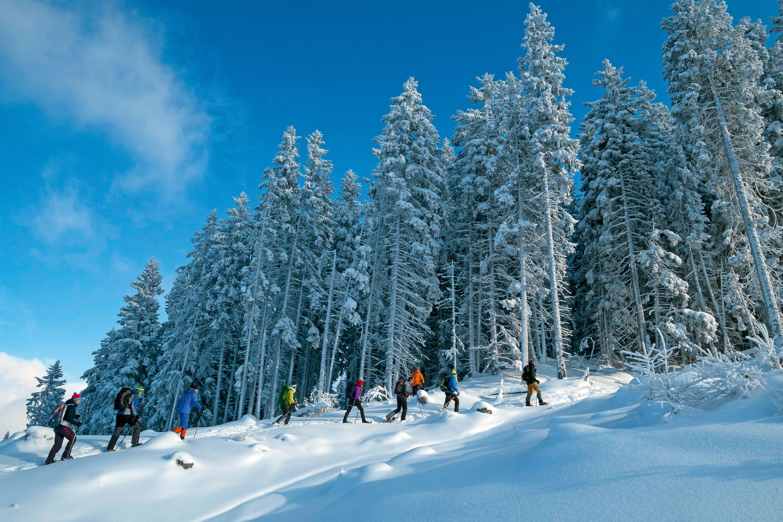 Aufstieg im frisch verschneiten Winterwald © Lutz Bormann