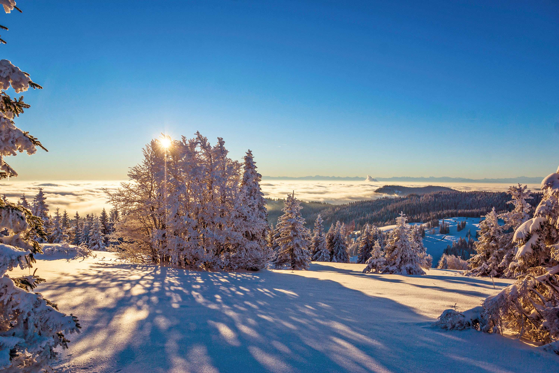 Unterwegs im Wintermärchen © Hochschwarzwald Tourismus GmbH