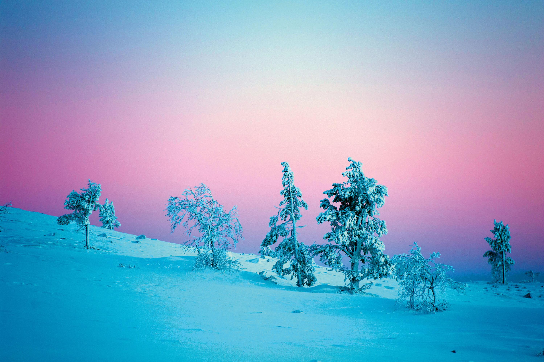 Morgen- oder Abenddämmerung?Lichtmalerei im November nördlichdes Polarkreises © Klaus-Peter Kappest