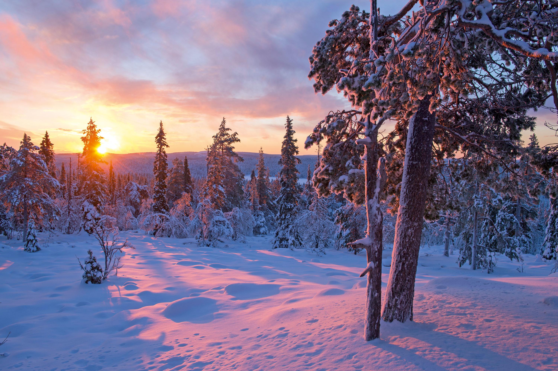 Schon im Februar lässt sich die Sonnefür kurze Zeit im Norden wieder blicken – was für eine Lichtstimmung! © Klaus-Peter Kappest