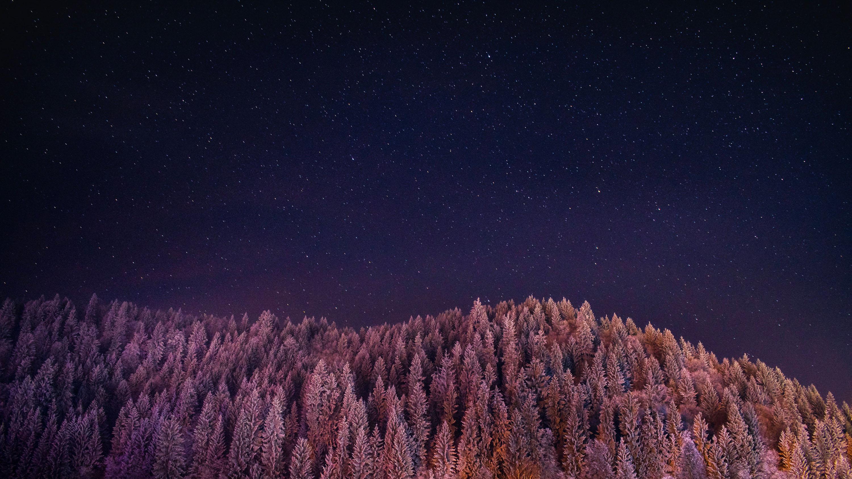Magische Stimmung im winterlichen Mondschein © pxhere.com