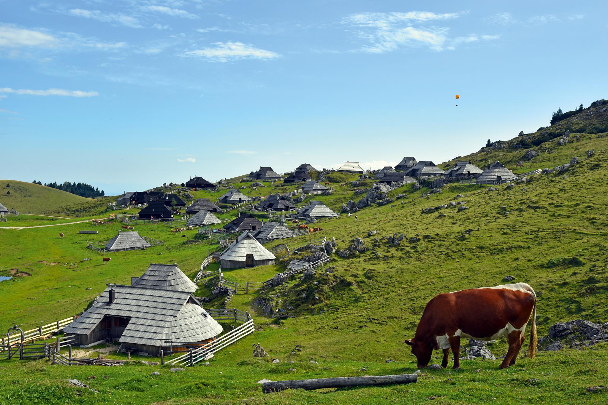 Historische Almen auf der Hochfläche Velika Planina. © Lutz Bormann