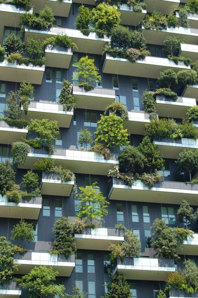 Grüne Fassaden sind nicht nur ein Hingucker, sondern auch nützlich für das Stadtklima © Unsplash