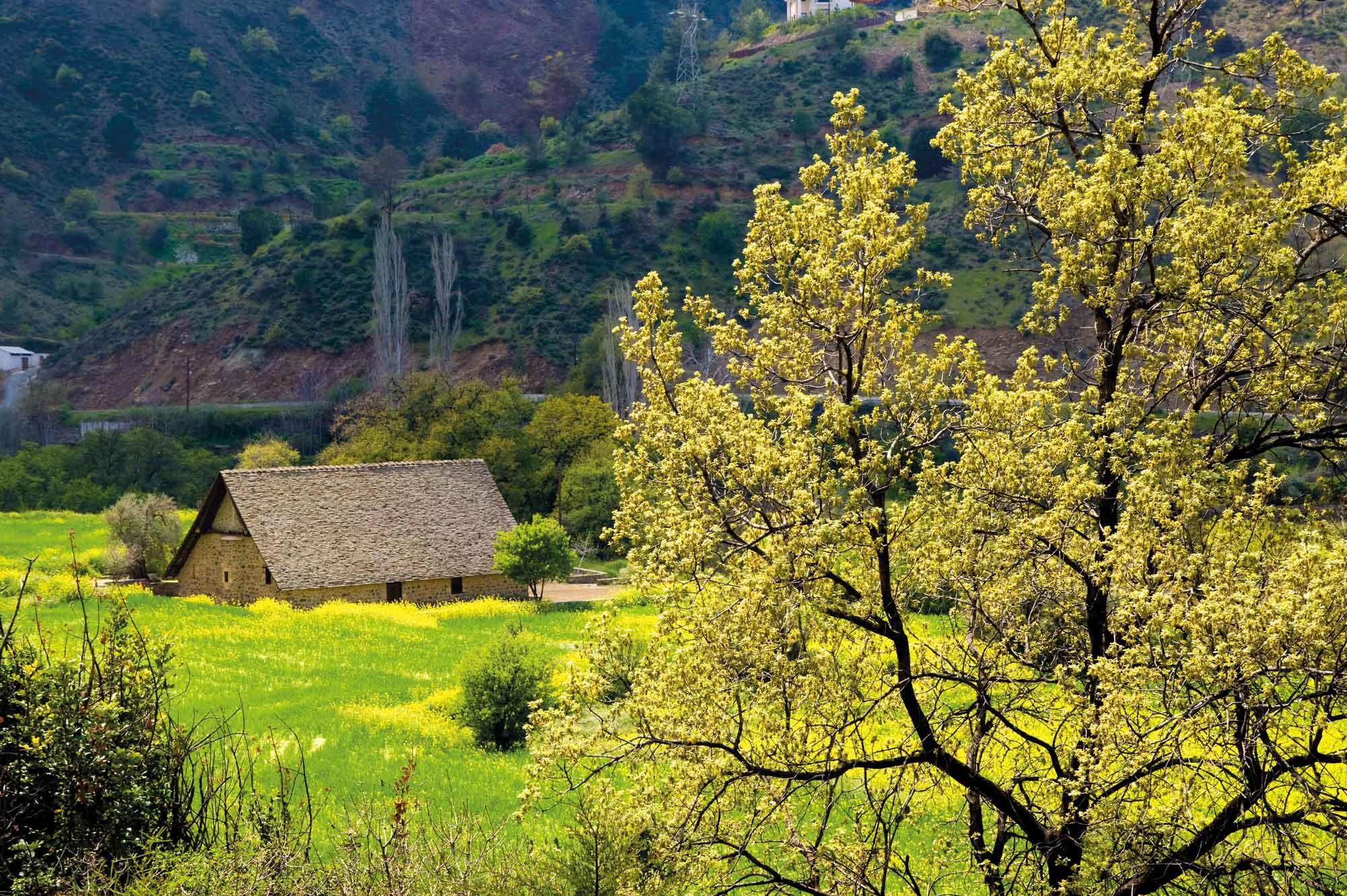 Archaische Landschaft im Troodos-Gebirge © Troodos Tourism Board
