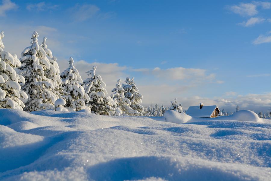Das Glitzern des Schnees: Schneekristalle reflektieren das Sonnenlicht © pxhere.com