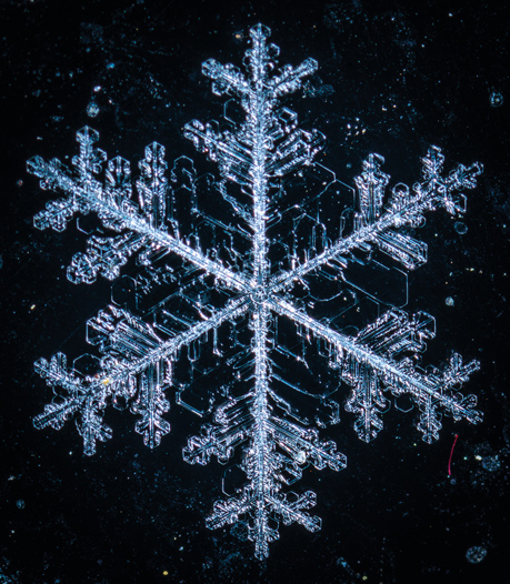 EIne Schneefloke unter dem Mikroskop © pxhere.com