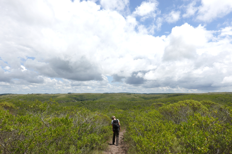 Auf dem Plateau der Quebrada de los Cuervos. © Manfred Probst