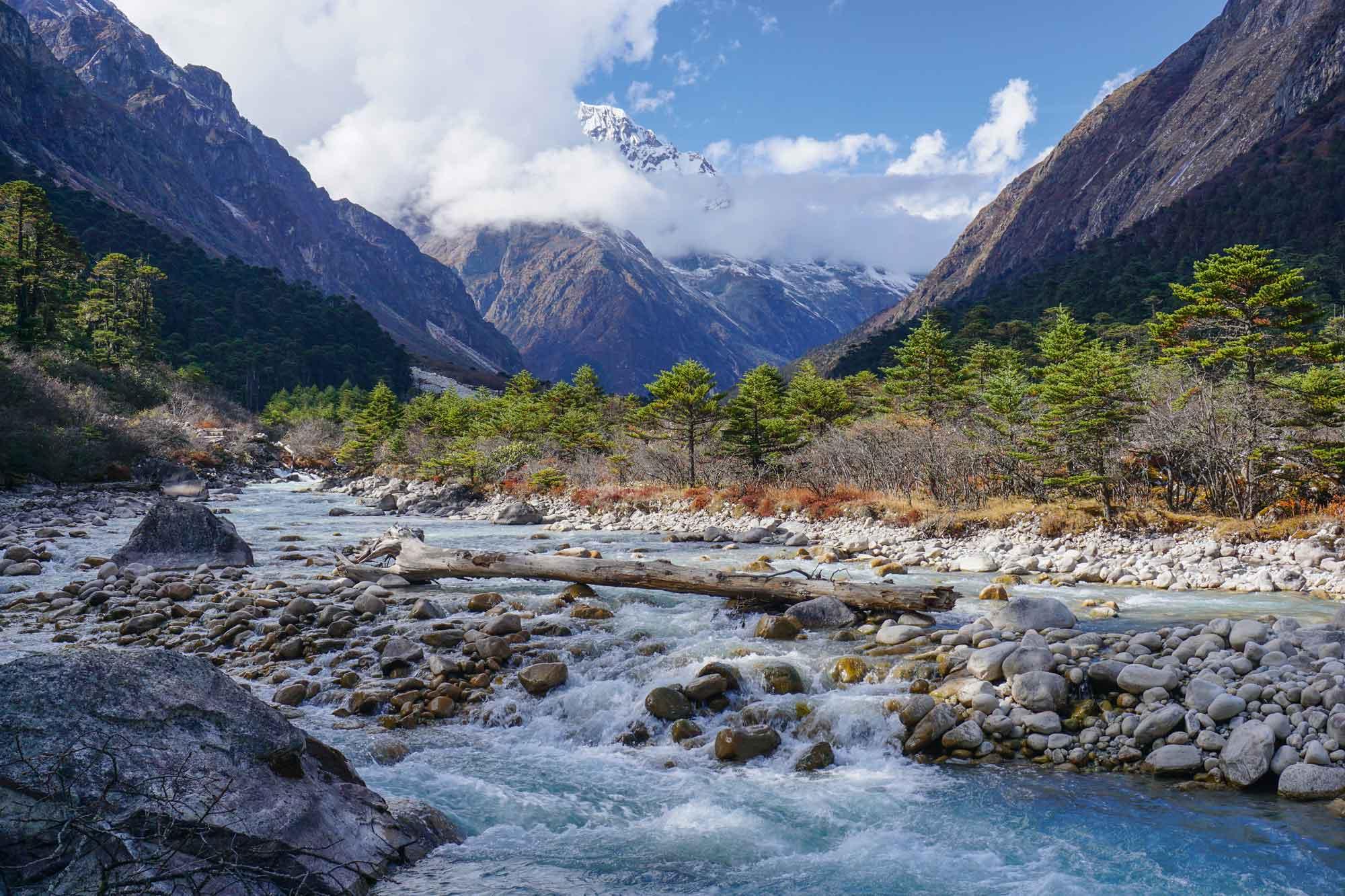 Immer wieder überraschen wildromantische Flusslandschaften  © Thorsten Hoyer