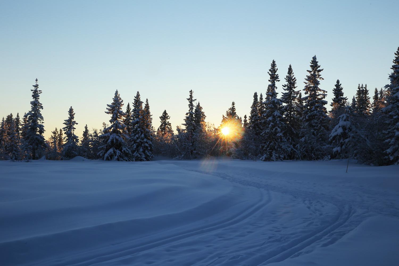Die Magie der Wintersonne
